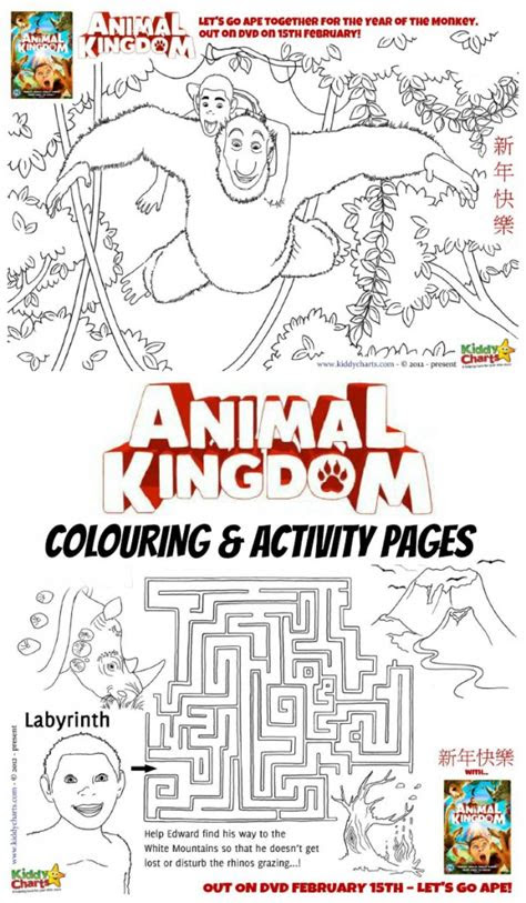 animal kingdom colouring pages  dvd giveaway