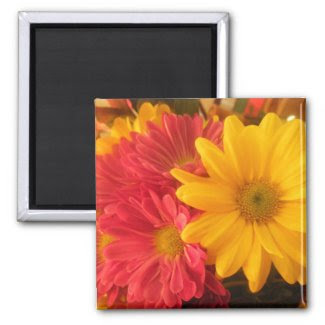 Pink and Yellow Daisies magnet