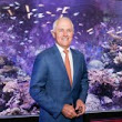 Malcolm Turnbull defends surprise $444 million Government donation to tiny reef body - Politics - ABC News (Australian Broadcasting Corporation)