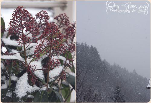 http://i402.photobucket.com/albums/pp103/Sushiina/Daily/dailysnow.jpg