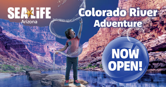 SEA LIFE Arizona Aquarium ~ Kids Get In Free For the Rest of May + Colorado River Adventure Now Open