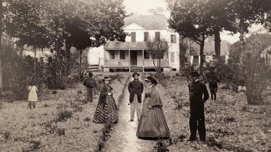 Us Slave Uprooting The Plantation