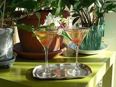 cocktail rose 2.jpg