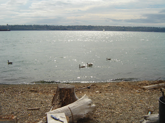 Home For Sale In Tacoma | Waterfront Fixer/Tear-Down at Browns Point
