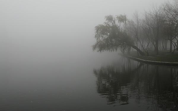 mist wallpaper