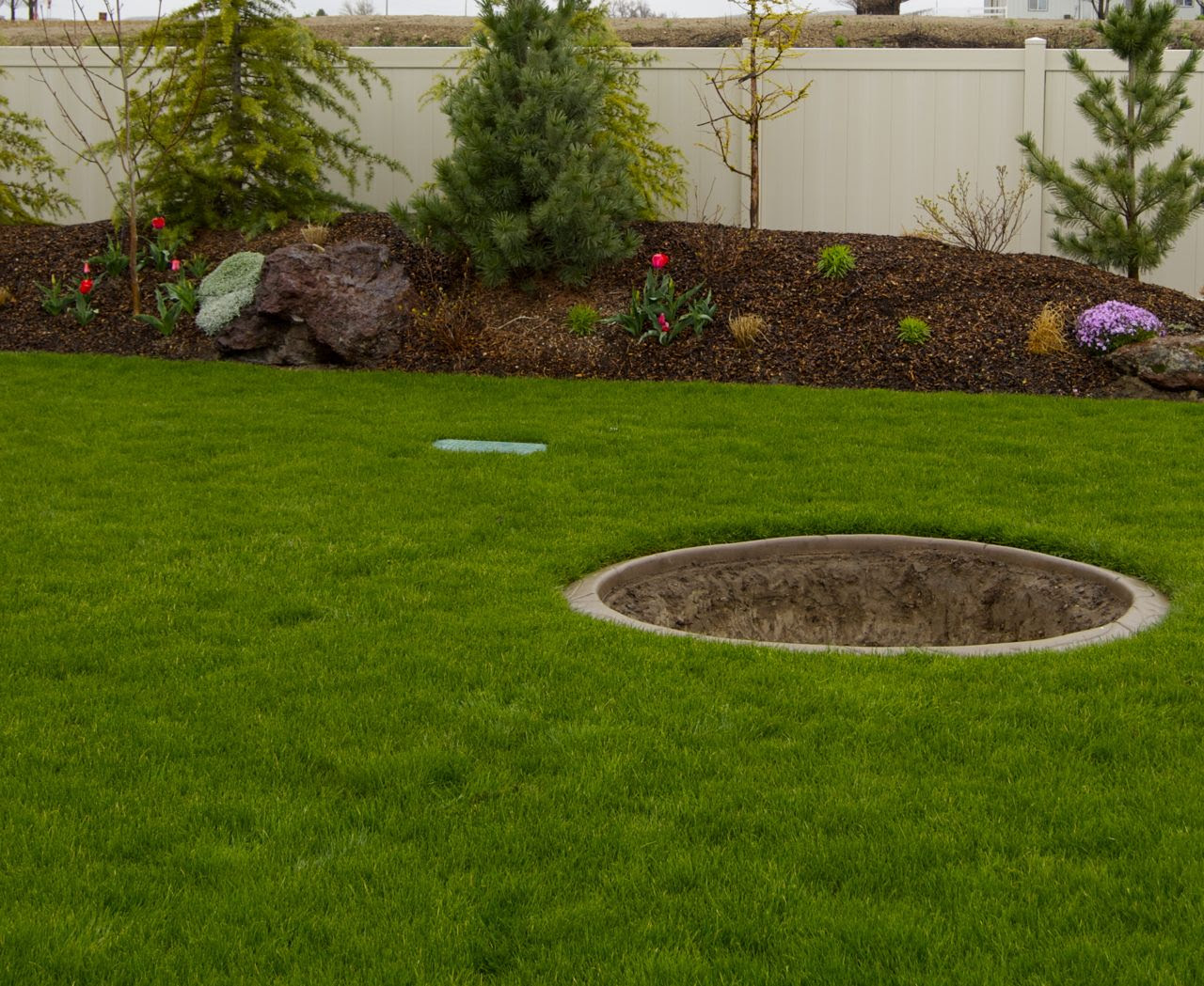 Landscaping Ideas for Wet Backyard