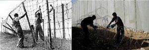 Jews Palestinians Nazis