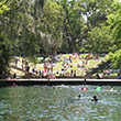 Swimming at Wekiwa Springs State Park.