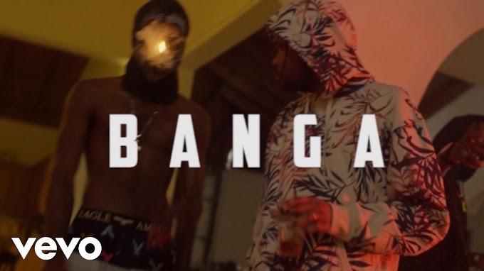 TIMELINE VIDEO: Temparize - Banga