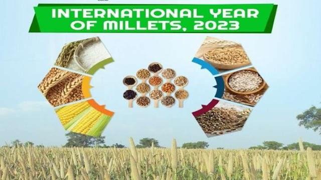 ज्वार-बाजरा को बढ़ावा देने की भारतीय पहल को बड़ी कामयाबी, UNGA ने स्वीकारा 'International Year of Millets 2023'