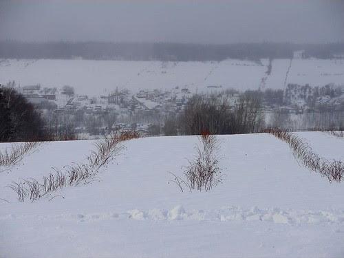 Quebec Feb 06 243