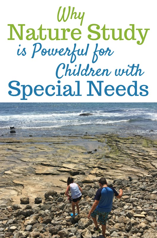 Why Special Needs Nature Study Powerful for Your Homeschool