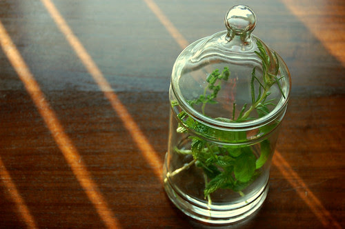 greens, glass