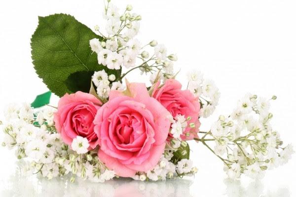 Resultado de imagen de bellas flores