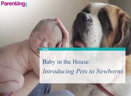 Baby in the House: Introducing Pets to Newborns | Parenting bits | Parenting Tips n Care