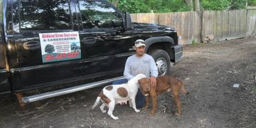 Houston Tree Service Aldine Stump Grinding