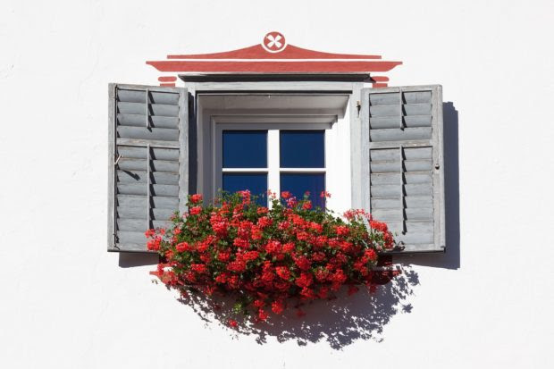 Curb Appeal: 12 Ways to Improve Your Property's Appearance