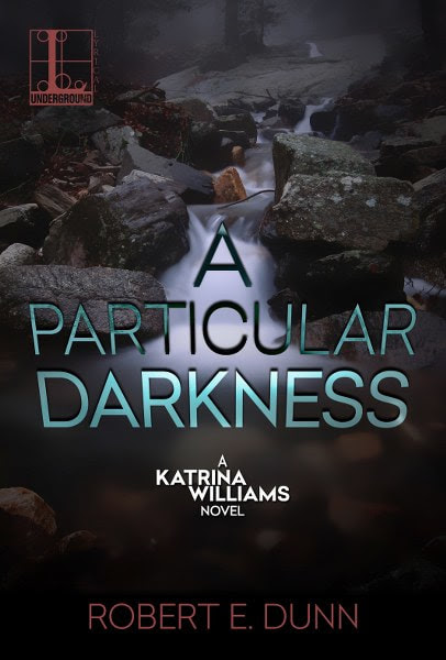 Book cover for mystery thriller A Particular Darkness from The Katrina Williams series by Robert E. Dunn.