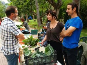 """Verdura ecològica de """"La Saoneta"""""""