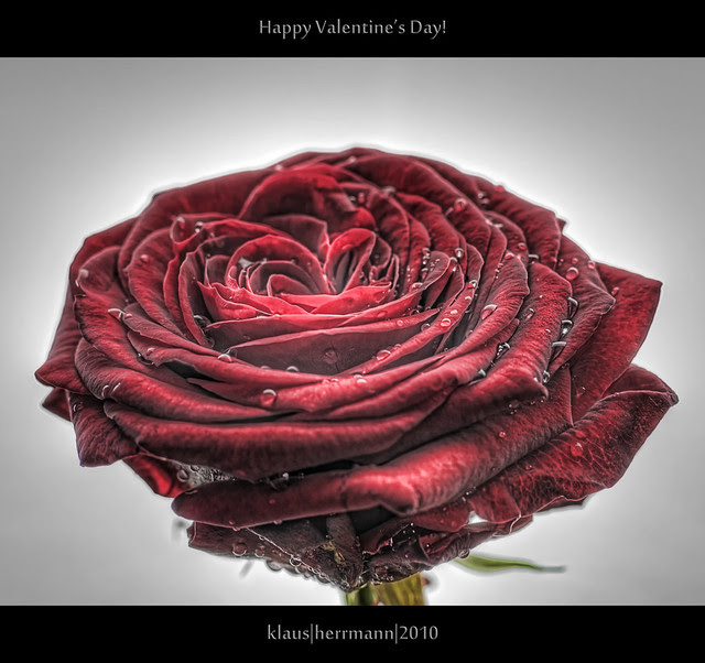 Happy Valentine's Day! (HDR)