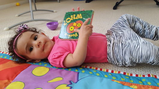 15 Fun and Educational Board Books for Your Baby