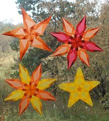 4 Autumn Stars