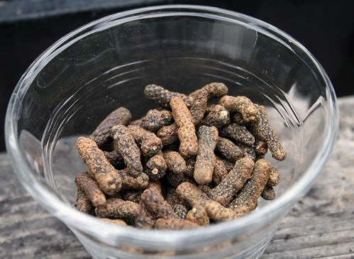 toasted long pepper