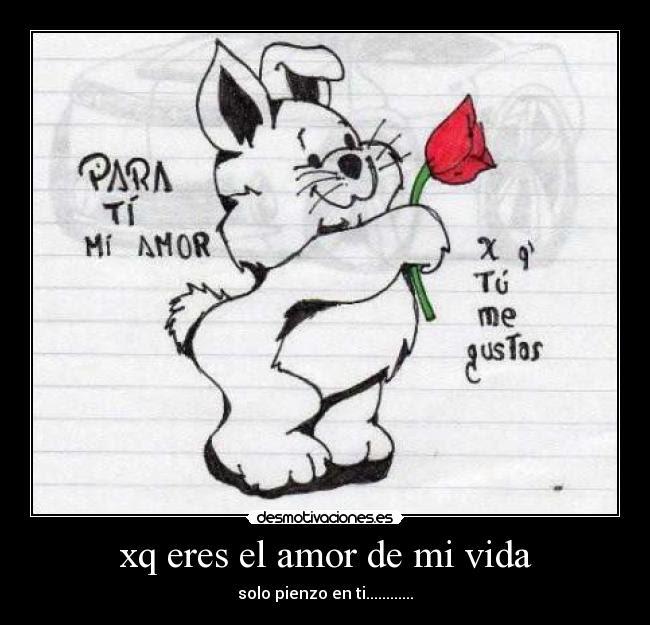 Xq Eres El Amor De Mi Vida Desmotivaciones