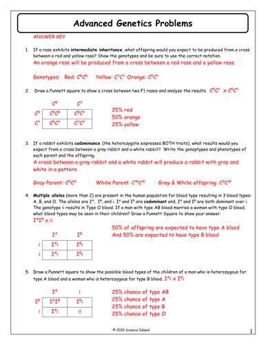 35 Genetics Problems Worksheet Answers - Ekerekizul