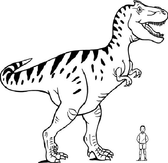 18 unique malvorlagen dinosaurier trex