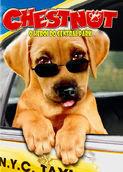 Chestnut - O herói do Central Park | filmes-netflix.blogspot.com