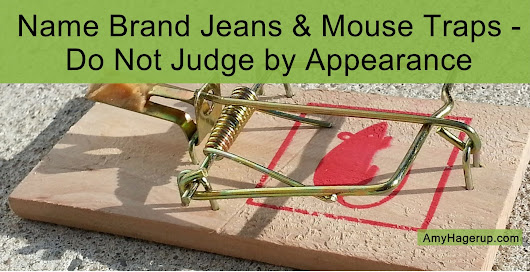 Name-Brand Jeans and Mouse Traps. . .Do Not Judge by Appearance - The Vitamin Shepherd