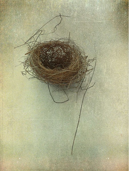Art and the Empty Nest