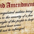 Ninth Circuit: Second Amendment Protects Right to Open Carry in Public | David J. Shestokas