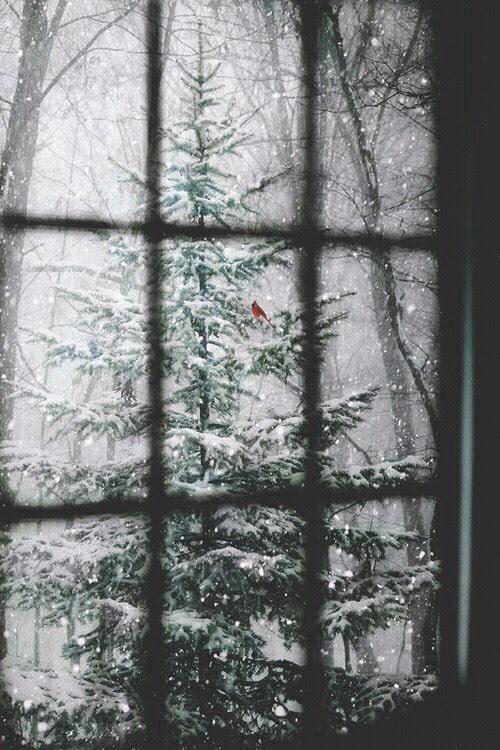 Unduh 44 Wallpaper Tumblr Winter HD Terbaru
