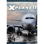 X-Plane 11 Global Flight Simulator [PC/Mac Game]