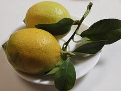lemon peel 01