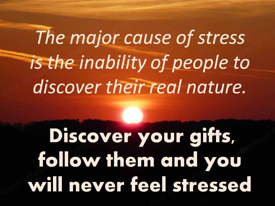 Quotes About Stress Humor 28 Quotes