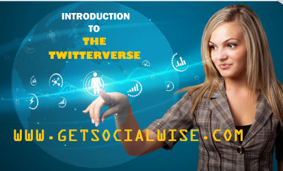 Introduction to The Twitterverse