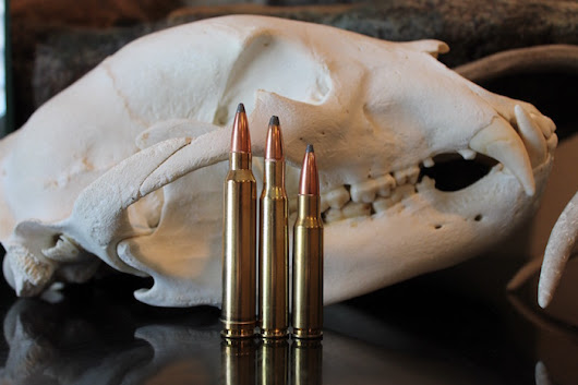 308 vs 30-06 vs 300 Win Mag: Which Cartridge Should You Be Hunting With? | The Big Game Hunting Blog