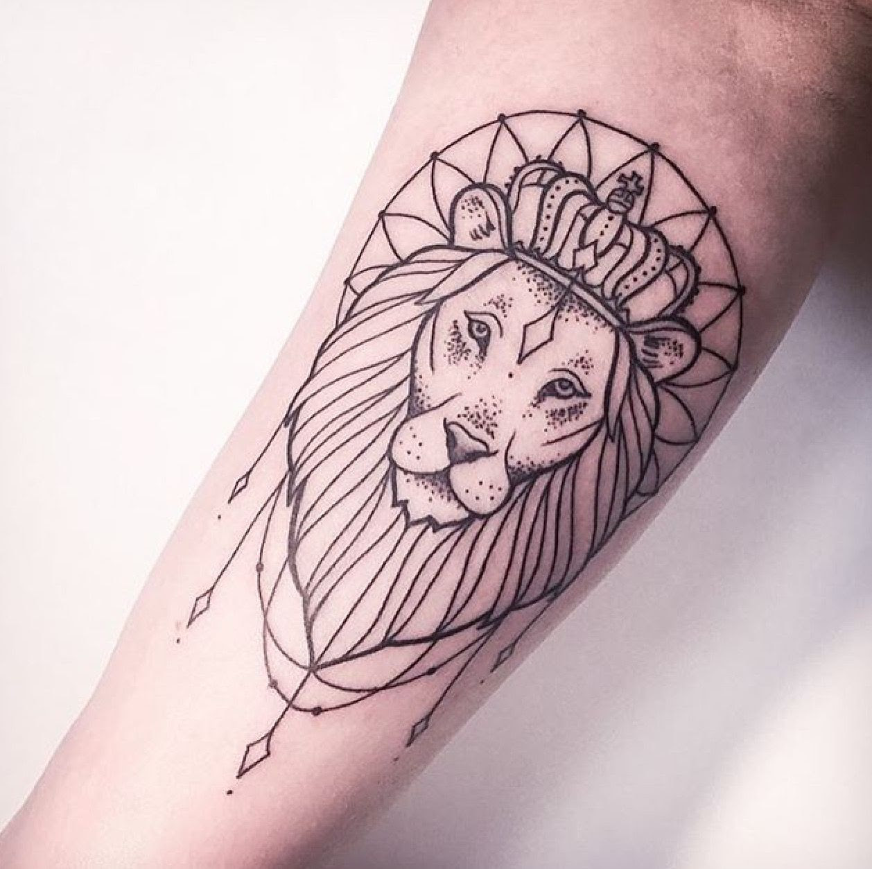 Heart Of A Lion Tattoo Girl Animalcarecollegeinfo