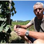 Série d'été. Grands crus d'Alsace : le Wineck-Schlossberg