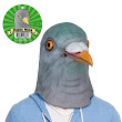 Pigeon Mask, A Bird on the Head is Worth Two in the Bush