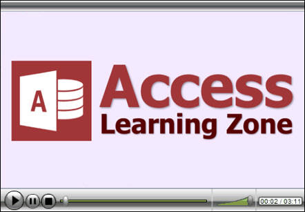 Microsoft Access Developer Level 8 Tutorial Access VBA, Visual Basic for Applications