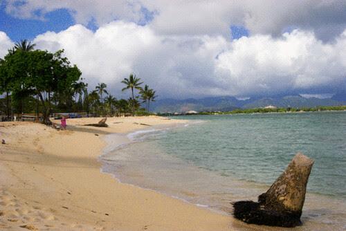 Hawaii_Beach_Iroquois_Point.gif