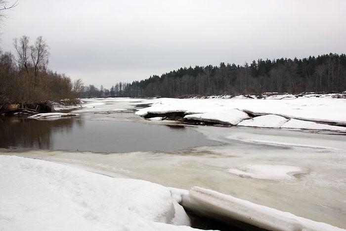 Šobrīd Gaujā ledus sanesumi izveidojušies no Ādažiem augšup pa upi aiz Garkalnes ciemata