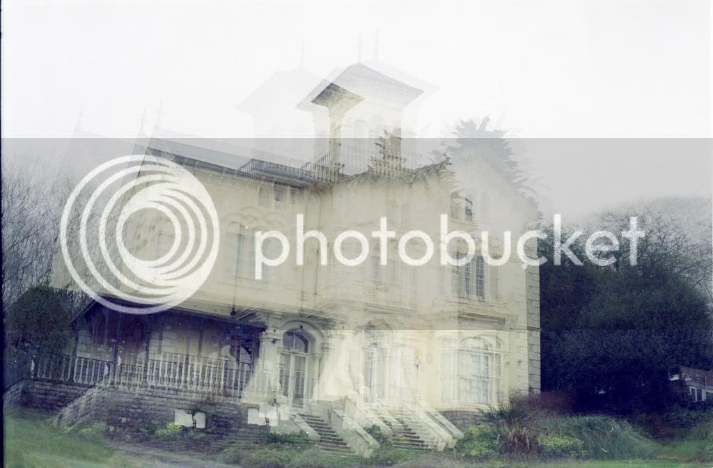 photo large33.jpg