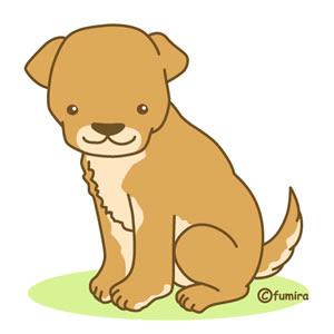 クリップアートビーグル犬柴犬のイラスト 子供と動物のイラスト屋