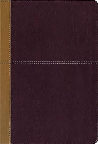 kjv bible red letter edition free download pdf