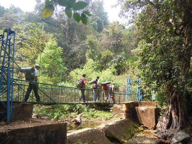 Brahmagiri_Trek_Hanging_Bridge